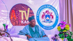 Anti-corruption agency reveals why Governor Ganduje has not been prosecuted for dollar videos
