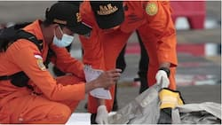 Indonesia plane crash: Rescuers make new discoveries after Boeing 737-500 tragedy (photo)