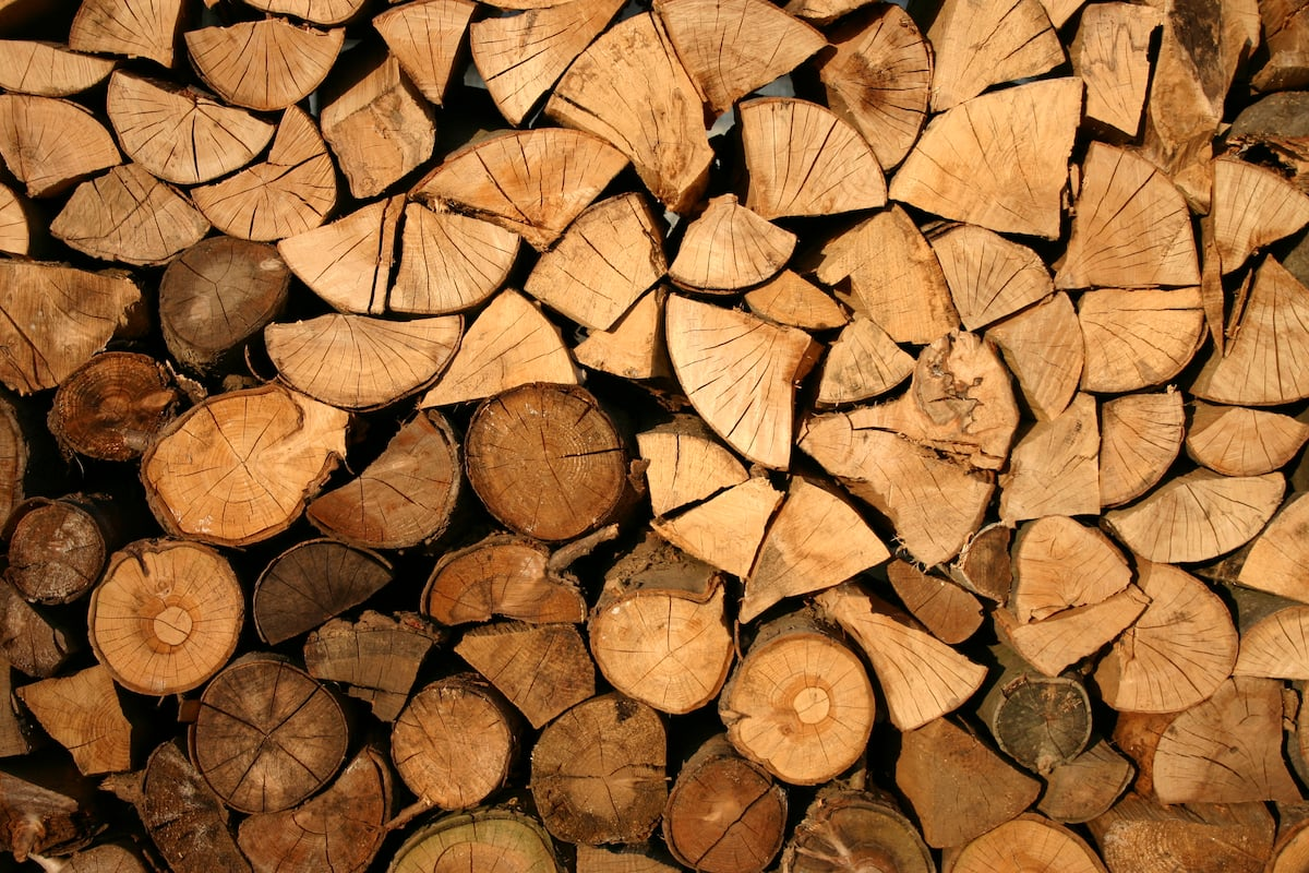 Top 10 Common Uses Of Wood In Our Daily