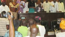 Open grazing: Ogun state Assembly proposes three-year imprisonment for offenders