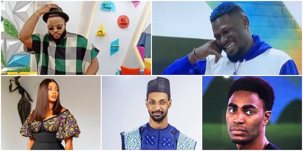 Whitemoney, Yousef, Niyi, 2 Others Up for Eviction As Wildcards Maria and Pere Nominate