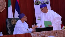 President Buhari makes 5 crucial appointments in education, names Oyegun, Tejuosho, others