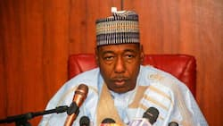 Gwamna Zulum zai gwangwaje malaman makaranta da ƙarin Albashi a jihar Borno