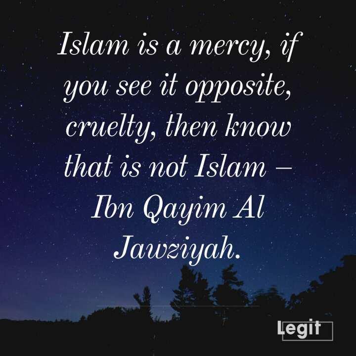 Islam peace quotes
