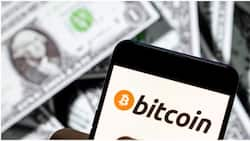 Investors gain $73.45 billion as bitcoin recovers amid price uncertainty