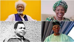 7 famous Nigerian professors and their outstanding achievements