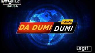 Yanzu-yanzu: 'Yan ta'adda da motocci masu bindiga 15 suna can sun kai hari Damboa