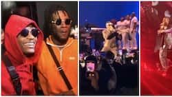 Video captures exciting moment Wizkid crashed Burnaboy's Hollywood Bowl concert