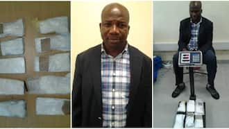 Photos emerge as NDLEA arrests top Nigerian politician with hard drugs at Lagos airport