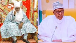 2023: Northern Emir hints on President Buhari's successor, roots for female presidency