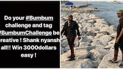 Nigerians share epic reactions to Davido and Zlatan's new song #bumbum challenge