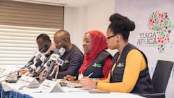 Twitter suspension, an affront on Nigeria's democracy, says Yiaga Africa