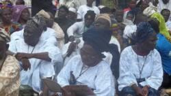 APC chieftain Olusi is distorting history, Aworis own over 75% of Lagos state - Ibile-Eko