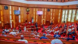 CSOs hail Nigerian Senate over electronic transmission of election results