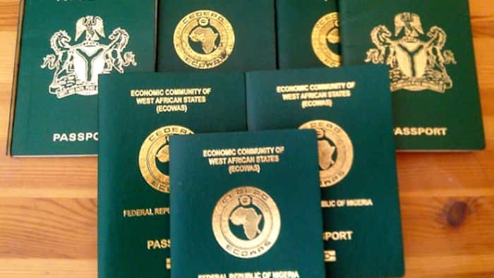 Passport production hits over 38,000 in four months in Lagos, NIS gives important reason