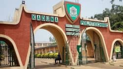 BREAKING: Polytechnic lecturers suspend strike, give reason