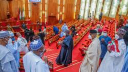 BREAKING: Disagreements as Nigerian Senate passes harmonised PIB