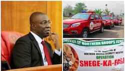 This is why community policing will not work in Nigeria - Ekweremadu