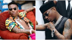 Youngest to get Grammy nomination, first to enter Guinness book: 5 other Wizkid's records on int'l scene