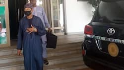 Abdulazeez Ganduje reportedly flees to Egypt after reporting mother to EFCC