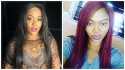 Comedienne Helen Paul comes for troll who accused her of using fake bleaching products