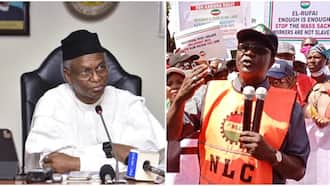 Coma and arrest me - NLC president dares Governor El-Rufai