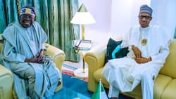 2023: This is what Buhari will never do for Tinubu - Former northern governor makes stunning revelation