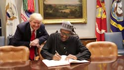 Twitter ban: Ex-president Trump goes prophetic, sends message to FG