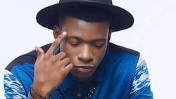 Listen to King Perryy - Murder feat. Teni: The newest song you need to hear