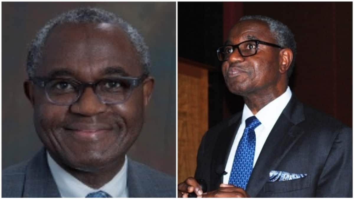 Meet Nigerian-American surgeon recognised as one of the best in US