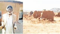Kill me if you want to, i won't run away because of you - Brave 97-year-old village head tells rampaging herdsmen