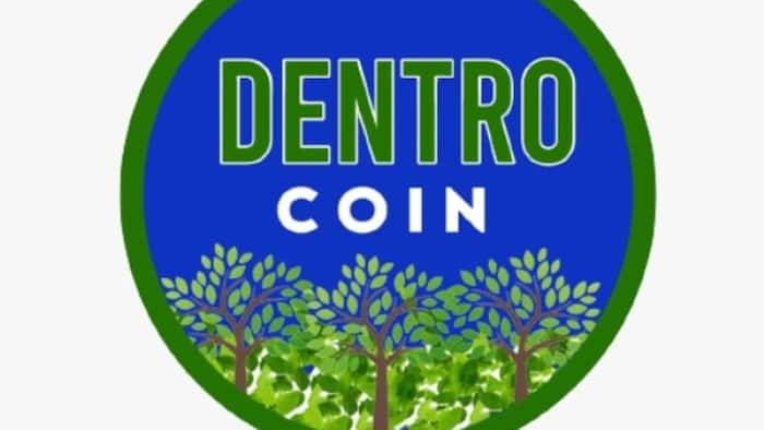 Why You Should BUY and HOLD Dentrocoin - Available NOW on CoinTiger