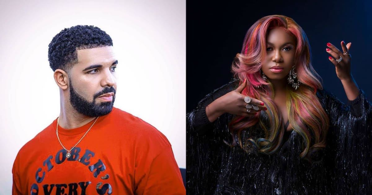 Drake and Niniola