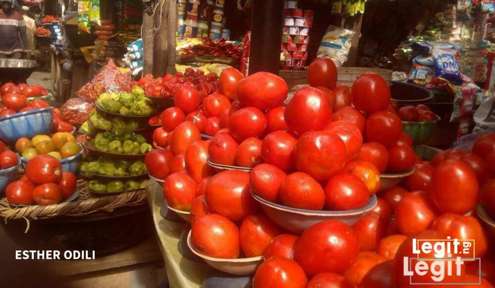 Tomato and pepper on display at Ketu market, Ketu, Lagos. Photo credit: Esther Odili