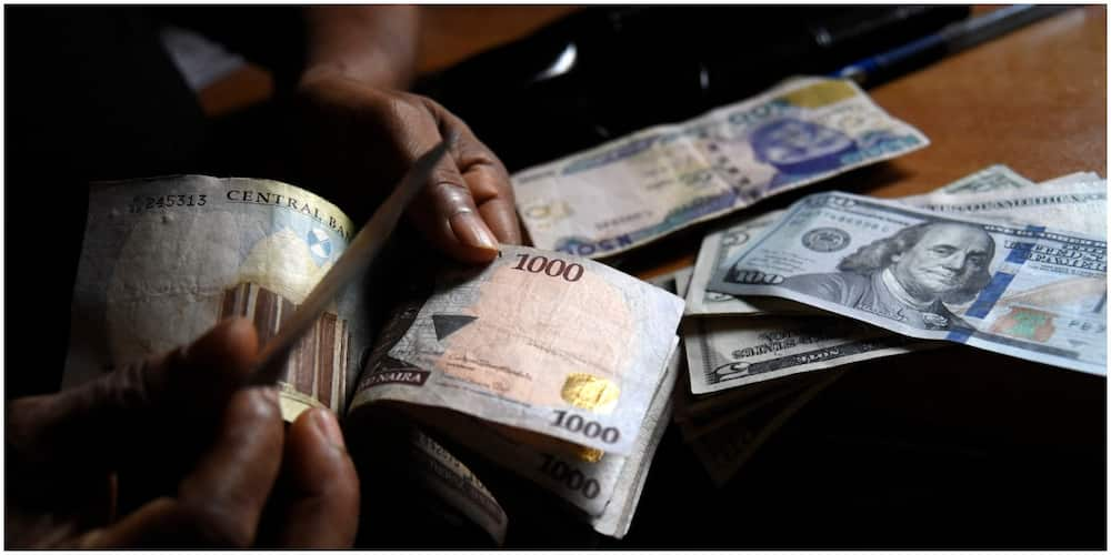 Nigerian CEO Buys N231.7 million Worth of Shares to Increase N3.49billion Fortune