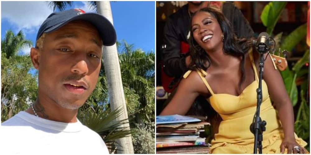 American Star Pharrell Gives Feedback After Listening to Tiwa Savage's Song Sends Social Media Into Frenzy