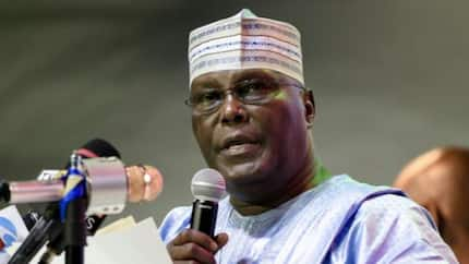 How PDP made Atiku presidential candidate, why we don't want him - SDP