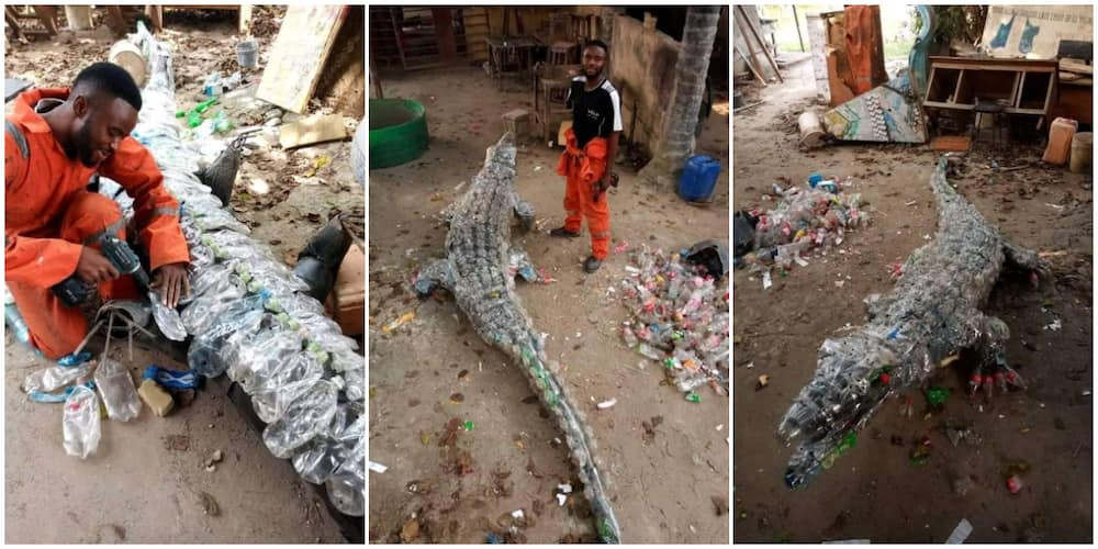 Nigerian man creates a 'moving' crocodile out of plastic waste, photos cause stir, many thought it looked real