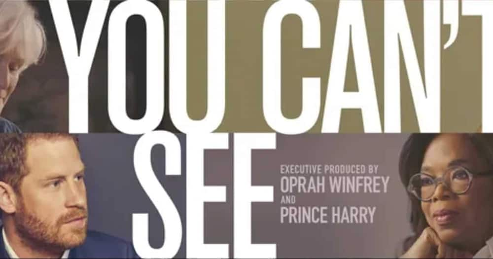 Fans Intrigued by Scenes from Trailer of Prince Harry, Oprah's New Mental Health TV Series