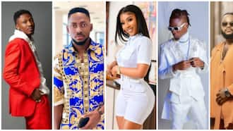 BBNaija: Legit fans decide on which season of the show was the best