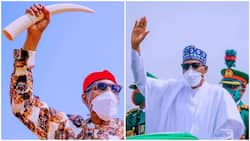 What Nigerians will miss about Buhari after 2023 - Former minister reveals