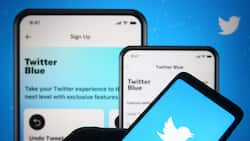 Thank God for VPN: Nigerians react as telcos block access to Twitter
