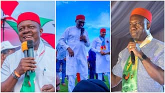 Forecasting the Anambra governorship election: Top 3 candidates who may emerge winner