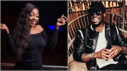 My dear Tacha, my management awaits you - Peter Okoye vows as he continues to show support for housemate