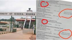 UNN best graduating students with N4.63 GPA share N1,500, N1,000 cash prizes among themselves, many react