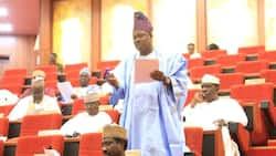 Senate in stormy session over South West Development Commission bill