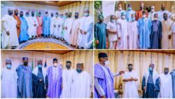 Eid-el-Kabir: Gbajabiamila, APC governors storm Daura to pay Sallah homage to Buhari