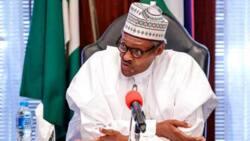 Ogoni cleanup, East-West road completion: Ex-Niger Delta militant leaders send message to Buhari
