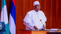 How we campaigned for the release of Buhari from house arrest - Amnesty International