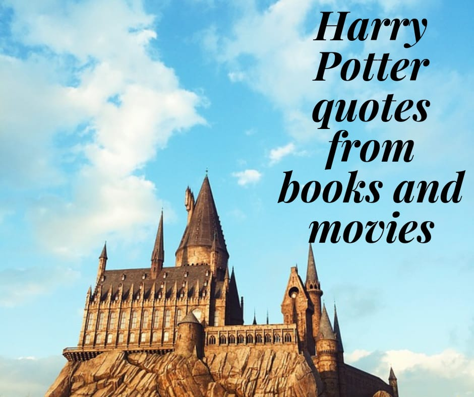 45 great Harry Potter quotes from books and movies Legit.ng